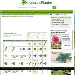 Calendrier Lunaire Graine Et Plantes.Calendrier Lunaire Pour Jardiner Avec La Lune Pearltrees