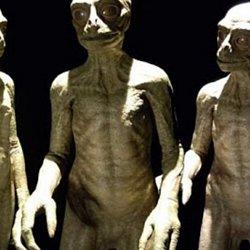 Alien types | Pearltrees