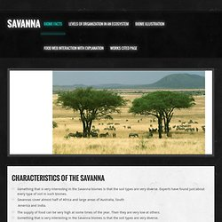 The Savanna | Pearltrees