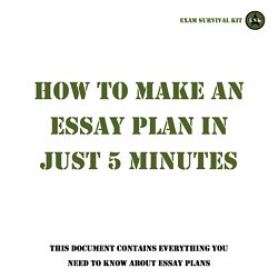 What is a essay plan
