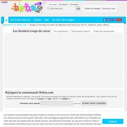 300 000 Wallpapers Photos Et Fonds Décran Sur Hebuscom