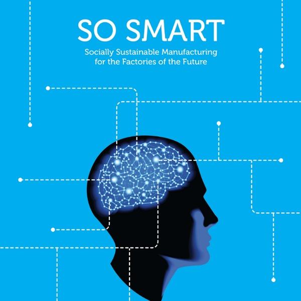 SOSMARTReportpreliminaryfindingssocialsustainabilitypractices