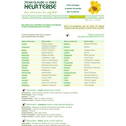 Plantes Aromatiques Pearltrees
